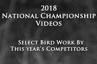 Videos From the 2018 National Championship